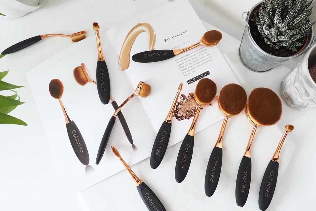 Cohorted Oval Brushes 4