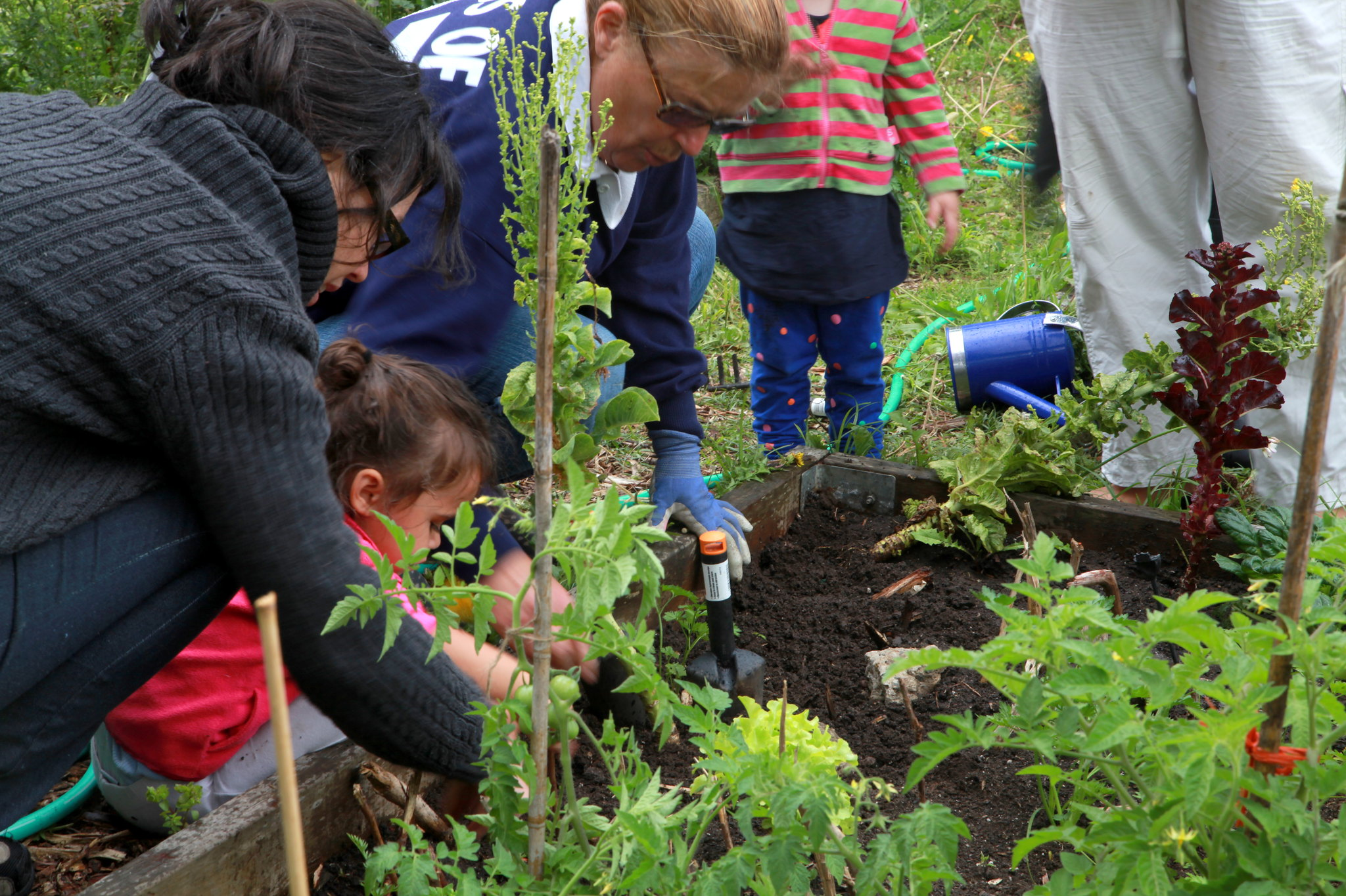 Help build a community garden and pay of your student loans