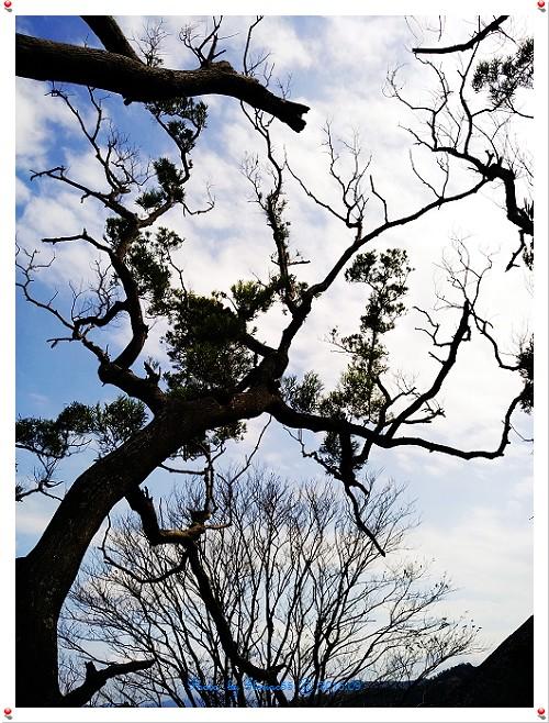 201609記事-05g