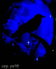 crow and blue moon