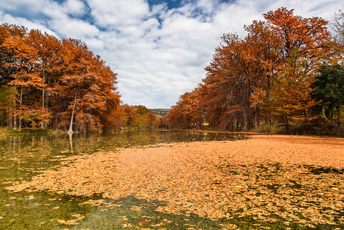 Autumn Leaves – Rio Frio, Texas | by Jeff Lynch