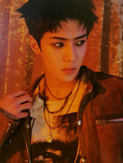 160907 LOTTO New Goods