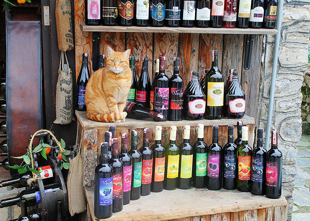 Cat posing with fruit wine bottles