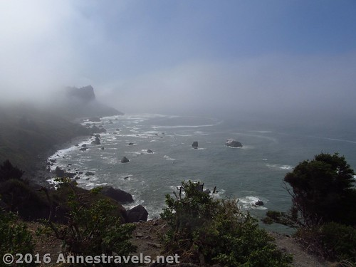 Views from an overlook along the seacoast, Redwood National Park, California