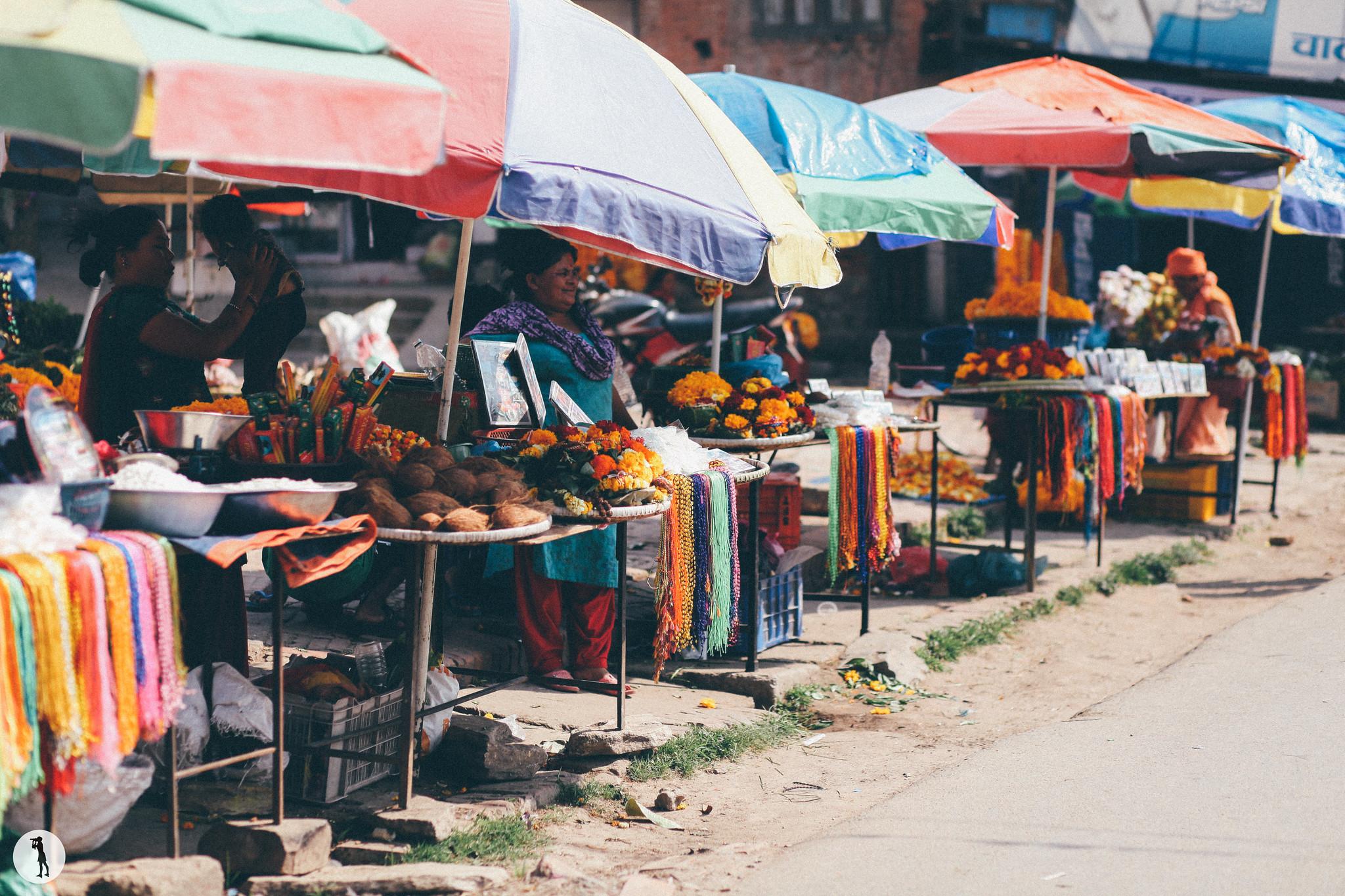 Voyage au Nepal, 2014