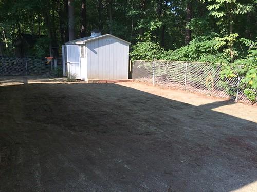 Backyard- August 2016