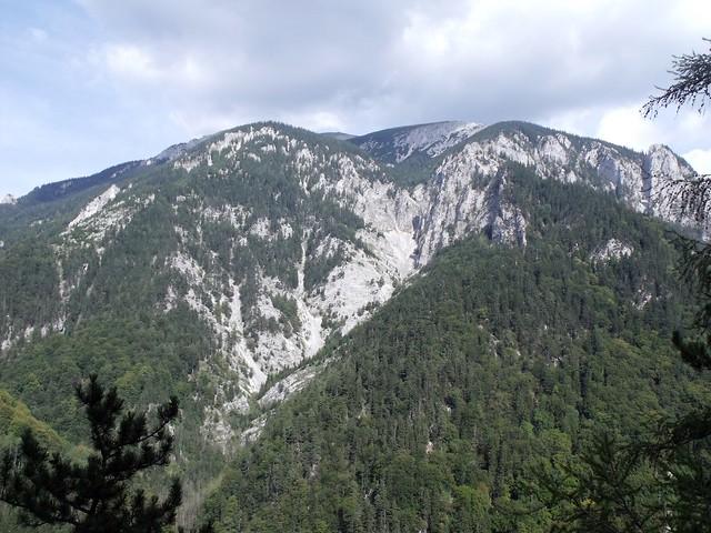 Rax Wachthüttelturm Weichtal Wichtel 170 m (6+)