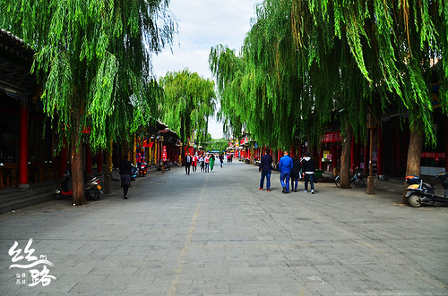 zhang6
