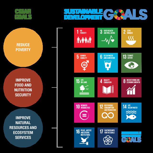 CGIAR Goald_SDGs_Vertical