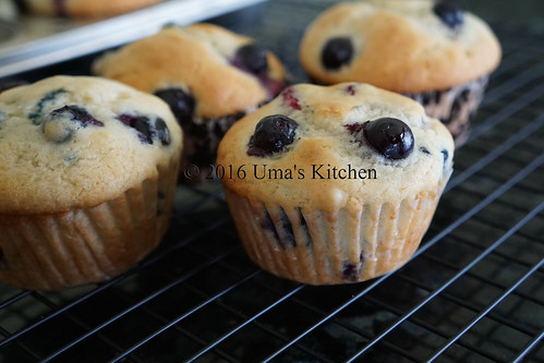 Blueberry muffin 7