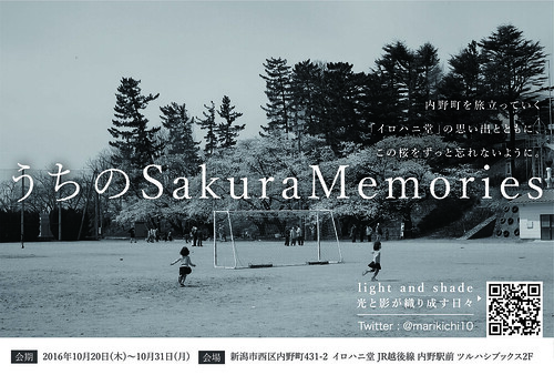 写真展 うちの Sakura Memories