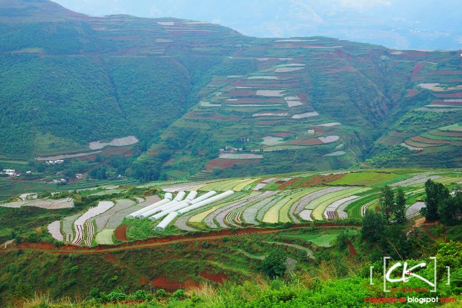 Yunnan_0030
