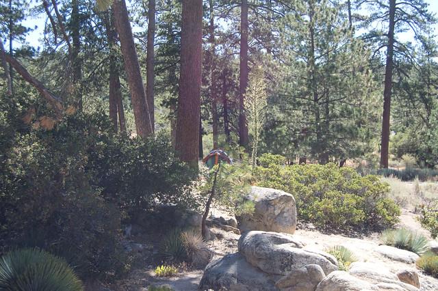 bandido campground