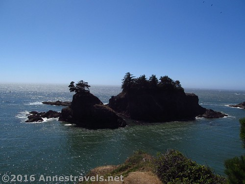 Sea stacks from the headland near Thunder Rock Cove, Samuel H. Boardman State Scenic Corridor, Oregon