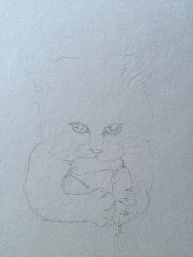 cat sketch Mine all Mine