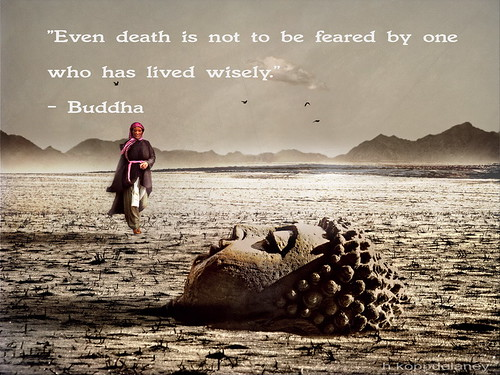 This Is The 62nd Of 108 Buddha Quotes: This Is The 44th Of 108 Buddha Quotes