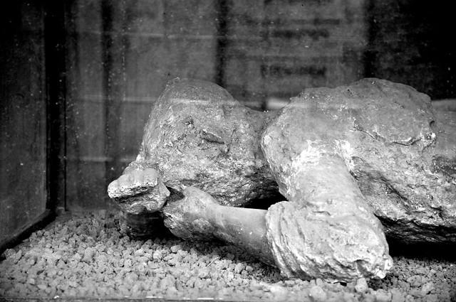 Body of Pompeii