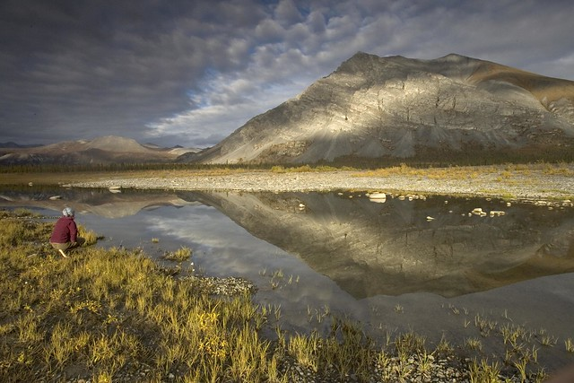 photo of Arctic National Wildlife Refuge
