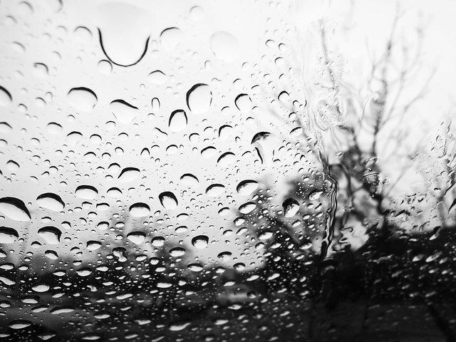 """rain slowly slides down the glass as if the night is crying."" ― Patricia Cornwell"