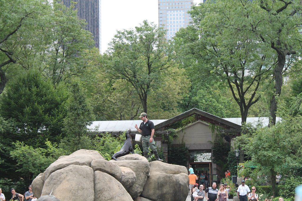 Central Park Zoo (93)