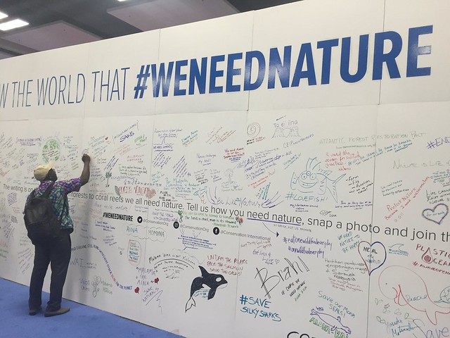 message wall at IUCN