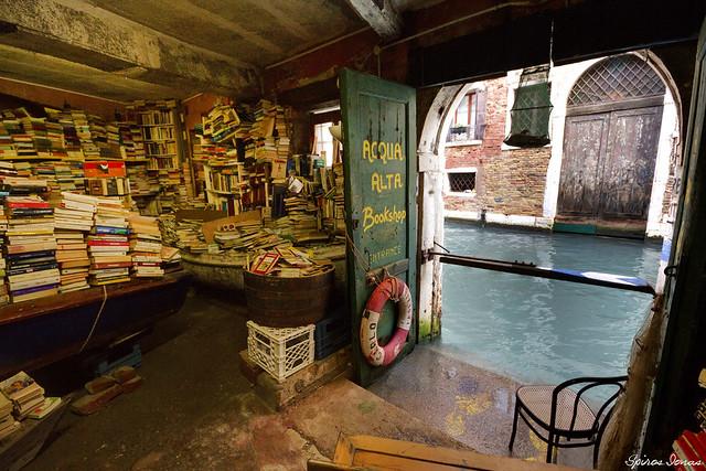Venice, libreria Acqua Alta