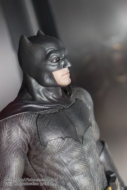 BATMAN100_HotToys_2-137