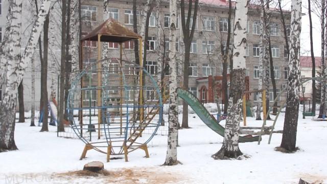 История одного парка