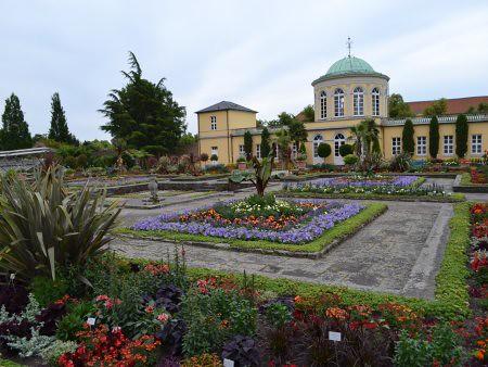 berggarten 1 locuri de vizitat in Hanovra