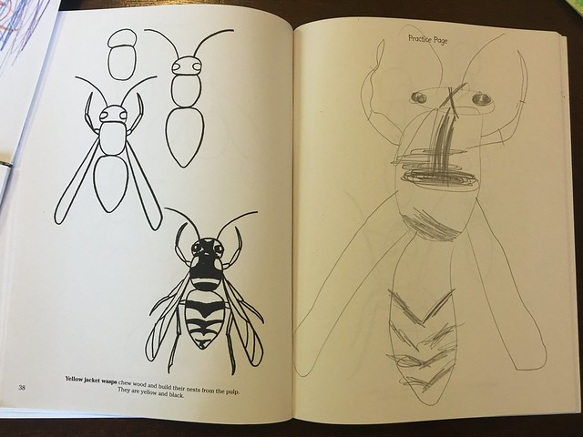 Epic Bug Camp