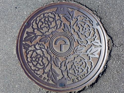 Akagi Shimane, manhole cover (島根県赤来町のマンホール)