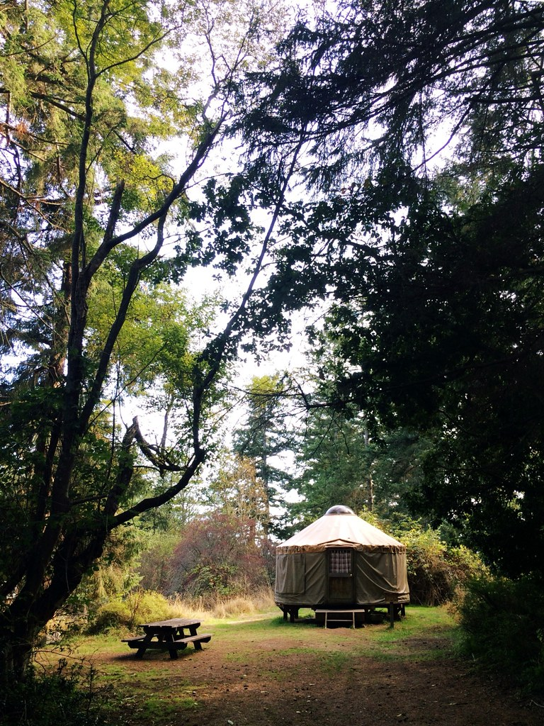 Seattle glamping in a yurt