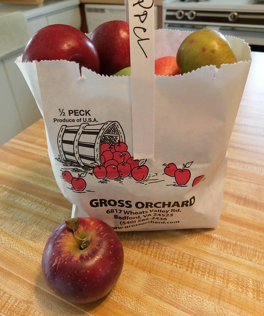 Went up to the Apple Valley Festival at Gross'Orchard today. Cane back with a quart of homemade Brunswick stew and a half peck of Gala, Winesap, Arkansas Black, Rome, Granny Smith Stayman-Winesap and York apples.  Can you say apple crisp time?   #nofilter