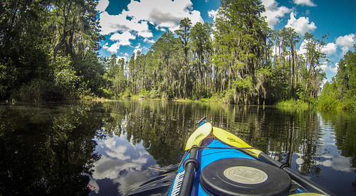 Lowcountry Unfiltered at Okefenokee-100