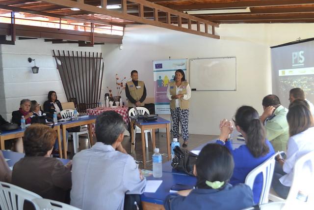 Consulta Institucional - PTS Mérida