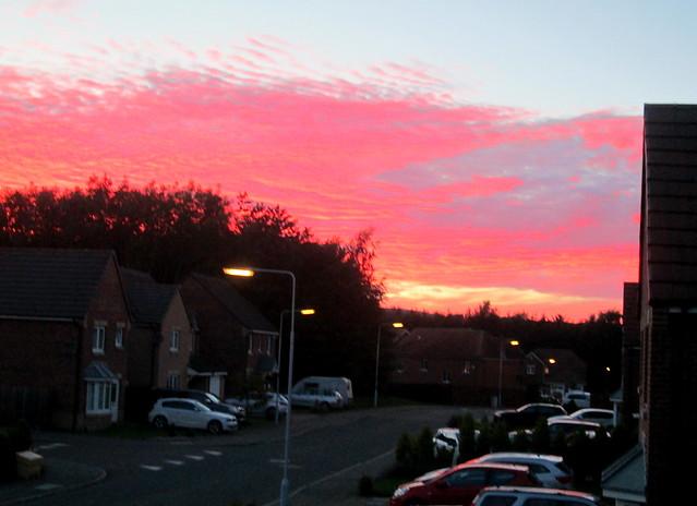 red sky 7