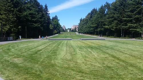 University of Washington Rolling Lawns