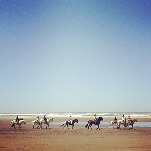 Perfect day for a horse ride on the beach. | by mrslisajnelson