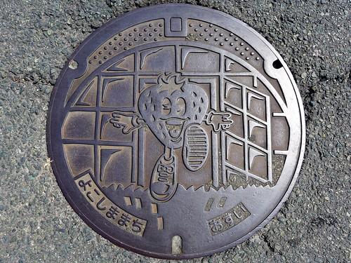 Yokoshima Kumamoto, manhole cover (熊本県横島町のマンホール)