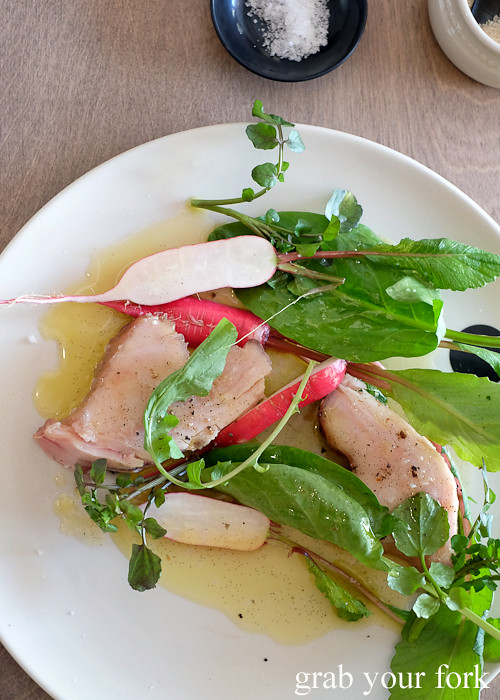 Mooloolabah albacore salad at Saint Peter by Chef Josh Niland in Paddington Sydney