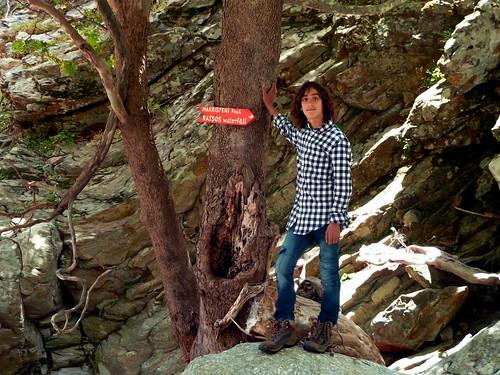 The one and only sign to the secret waterfall. Για τον Ράτσο στο μπλογκ της Νανάς: Ο Άγνωστος Τρίπατος Ράτσος στη Χάλαρη