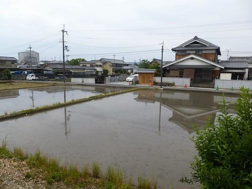 jp16-Nara-j2-balade2 (4)