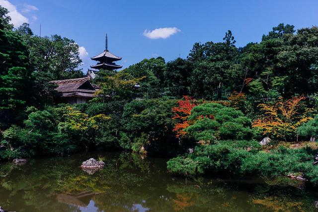 Kyoto_Ninna-ji_05