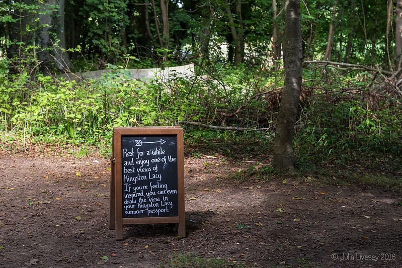 In the Woodland Walk (4)