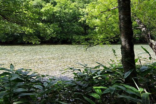 Azusa-gawa river Kamikochi 2016 summer 39