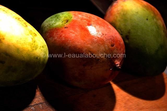 Mousse de Mangue Fraîche au Mascarpone © Ana Luthi Tous droits réservés 02