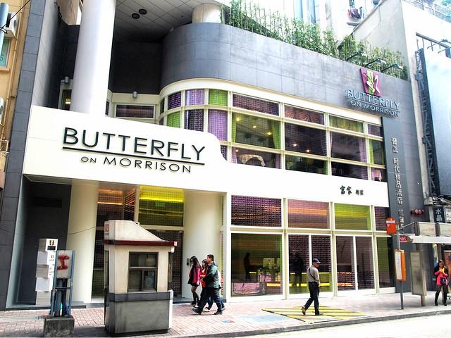 Butterfly on Morrison