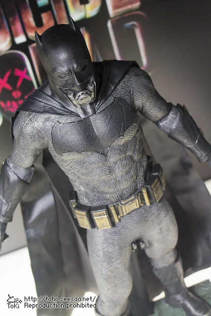 BATMAN100_HotToys_2-223