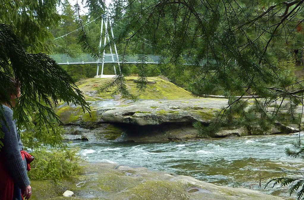 Top Bridge park, Parksville