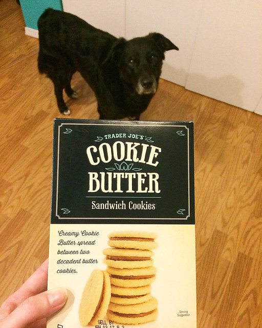 If you like shortbread (and butter), you have to try these cookies from Trader Joe's! Mmmmfffssss 😍